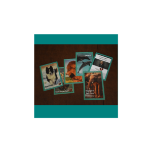 Trauma Sensitive Educator Cards