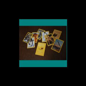 Trauma Sensitive Parenting Cards - Spanish