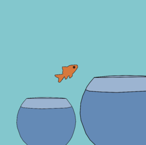 Gold fish jumping from a small bowl to large bowl - Failing Forward