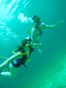 pair of scuba divers