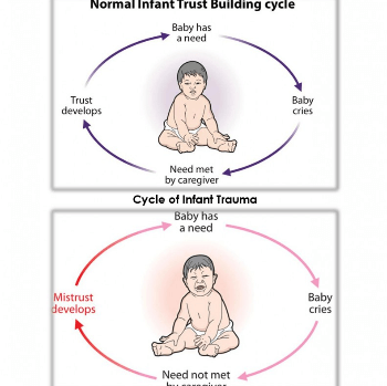 Attachment Cycle Chart